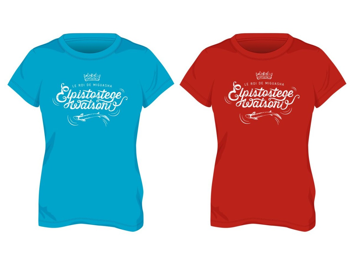 Collection promotionnel de t-shirt corporatifs fabriqués au Québec